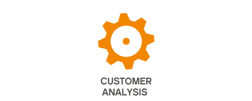 customer_analysis